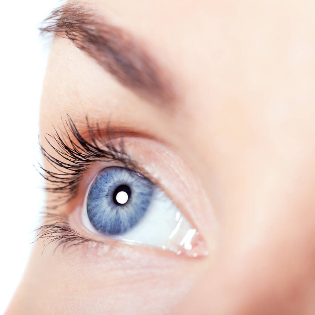 Augebrauen und Wimpern färben