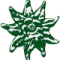 Edelweiss Blume